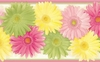 Daisy Chain Wallpaper Border
