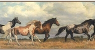 Galloping Horses Wallpaper Border NV9449b