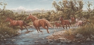 Horses Running Through Stream Wallpaper Border HB719b