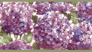 Hydrangea Wallpaper Border RC005155b