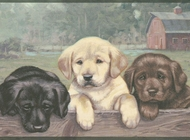 Lab Puppies Wallpaper Border WD4178b