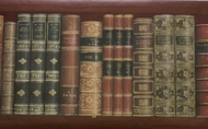 Library Books Wallpaper Border DC9001b