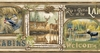 Poinsett Neutral Cabin Fever Wallpaper Border TTL01541b
