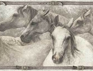 Sketches of Horses Grey Wallpaper Border HN4301b