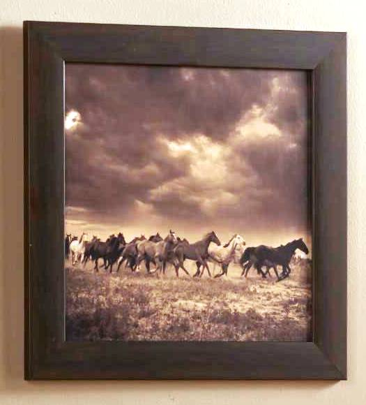 (ABC490189 8WAH RNF) Running Free Western Wall Art