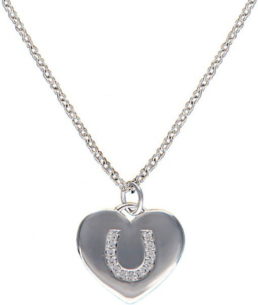 msnc201 western with horseshoe charm necklace