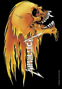 METALLICA SKULL & FLAME FABRIC POSTER
