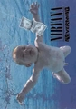 NIRVANA NEVERMIND FABRIC POSTER