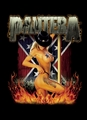 PANTERA GIRL SOUTH FABRIC POSTER