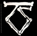 TWISTED SISTER TS BONE LOGO STICKER