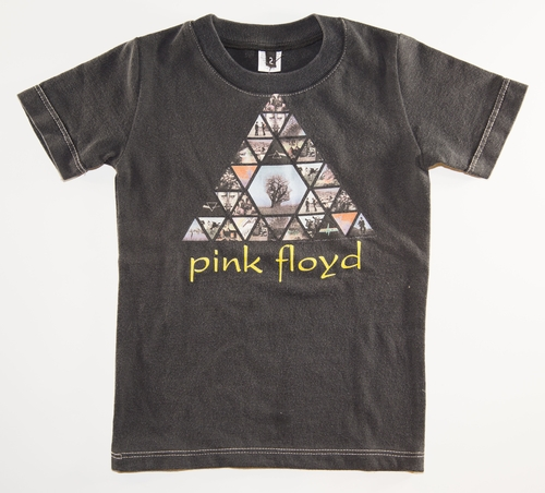 SandBox Rebel Pink Floyd Tee (2)