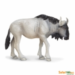 Safari Wildlife Blue Wildebeest