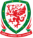 Wales National Soccer Team