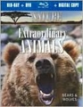 Nature: Extraordinary Animals: Bears & Wolves (Blu-Ray, New) - Wide Screen