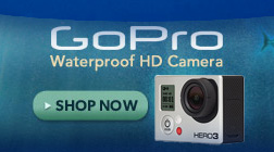 GoPro Waterproof HD Camera