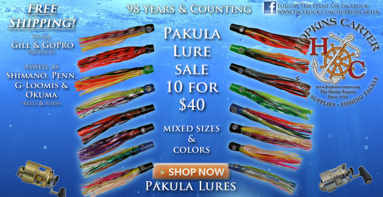 Pakula Blow Out sale