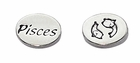 Sterling Silver Message Bead - Pisces