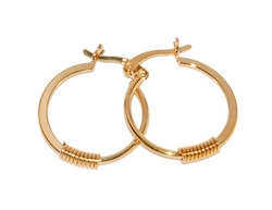 1-2553-D1 Small Coil Earrings