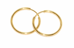 1-2556-D2 21mm Seamless Hoops