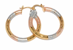 1-2705-D2 Three Tone Hoops