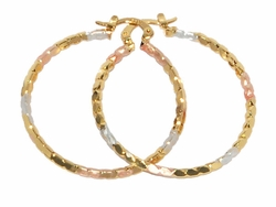 1-2707-D3 Three Tone Hoops