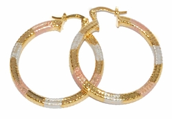 1-2769-D1 Three Tone Edged Hoops