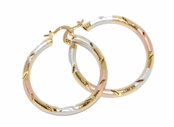 1-2766-D1 Three Tone Hoops