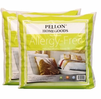 Allergy Free Pillow Insert Twin Pack 16inX16in
