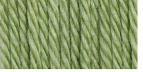 Bernat Satin Solid Yarn Fern
