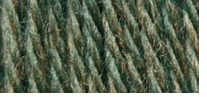 Bernat Satin Yarn Solids Forest Mist Heather