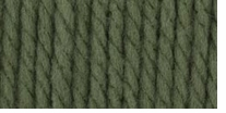 Bernat® Softee Chunky Yarn Forest