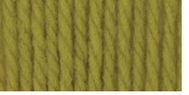 Bernat Softee Chunky Yarn Grass
