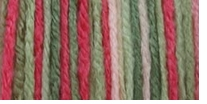 Bernat Super Value Ombre Yarn Garden Party