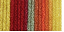 Bernat Super Value Ombre Yarn Happy Days