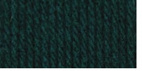 Bernat Super Value Solid Yarn English Teal