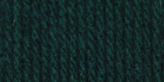 Bernat Super Value Solid Yarn English Teal - Click to enlarge