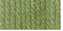 Bernat Super Value Solid Yarn Fern
