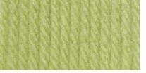 Bernat Super Value Solid Yarn Soft Fern