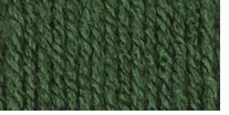 Bernat Waverly Yarn Billiard Green