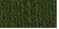 Bernat® Waverly Yarn Turtle Green Simplicity