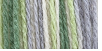 Bernat Softee Baby Yarn Ombres Green Flannel