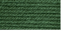 Caron Natura One Pound Yarn Leaf Green