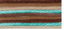 Caron Simply Soft Paints Yarn Driftwood