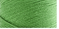 Caron� Simply Soft� Yarn Green