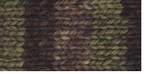 Deborah Norville Collection Serenity Chunky Weight Yarn Dark Forest