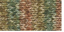 Deborah Norville Collection Serenity Chunky Weight Yarn Forest