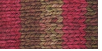 Deborah Norville Collection Serenity Chunky Weight Yarn Red Bayou