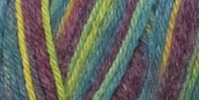 Deborah Norville Collection Serenity Sock Yarn Harlequin