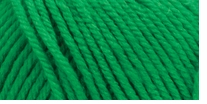 Deborah Norville Everyday Soft Worsted Yarn Electric Green