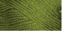 Deborah Norville Collection Everyday Soft Worsted Yarn Solids Kiwi